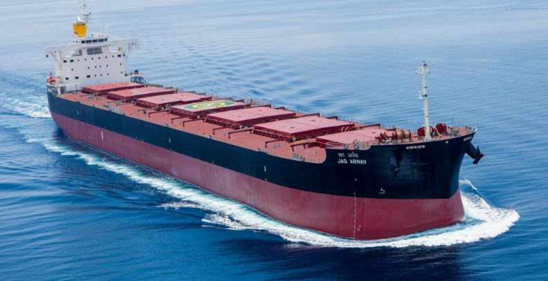 Largest Shipping Companies in India
