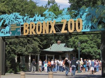 Biggest Zoos in USA